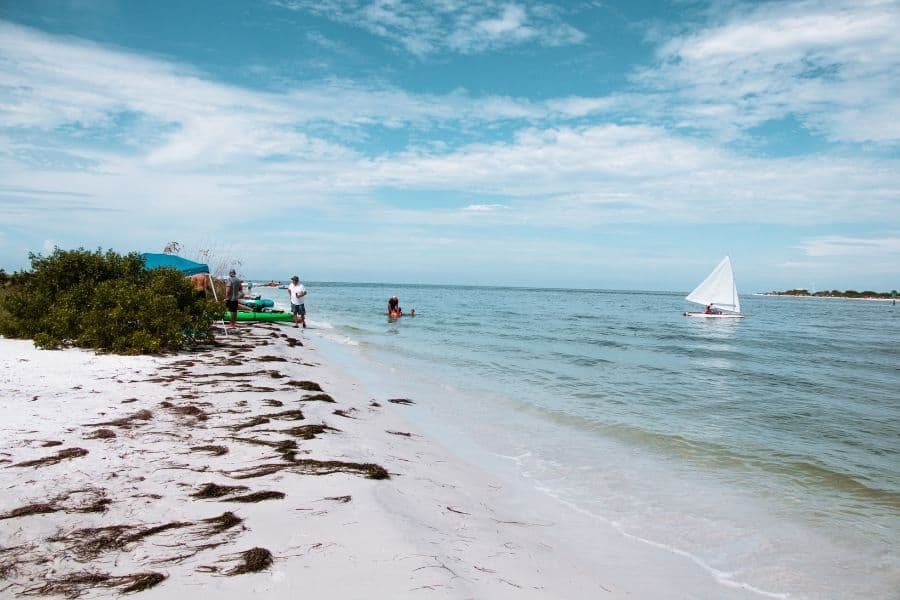 honeymoon island state park florida